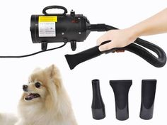 dog hair dryer - Google Search