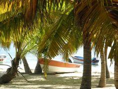 OLYMPUS DIGITAL CAMERA boot dominicaanse republiek
