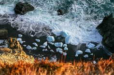{Newfoundland} Bergy Bits in Flatrock