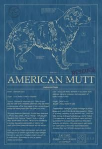 131 best dog blueprints images on pinterest best dogs dog breeds animal blueprint company american mutt 01 dog print blue printsdog malvernweather Image collections
