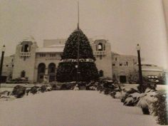 Dec 1929 - Rare white Christmas in San Antonio. Grounds in front of the Municipal Auditorium covered in snow.