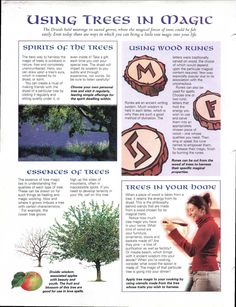 Enhancing Mind Body Spirit  21 Nature Magic Card 18 (back) Using Trees in Magick