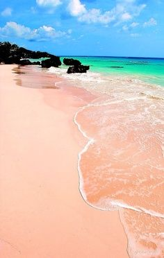 Finding pink sand.
