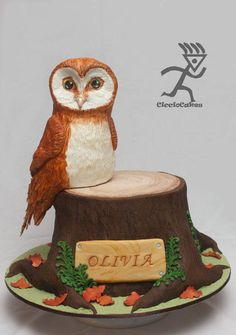 Soren from Legends of the Guardians Owl Cake all edible - Cake by Ciccio