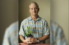 If you don't love Bill Murray, you're probably lying #StonedInsider