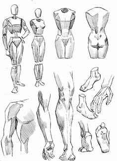 Exceptional Drawing The Human Figure Ideas. Staggering Drawing The Human Figure Ideas. Male Figure Drawing, Figure Drawing Reference, Art Reference Poses, Figure Drawing Tutorial, Hand Reference, Drawing Studies, Art Studies, Drawing Techniques, Drawing Lessons