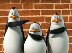 penguins of madagascar funny images - Google Search