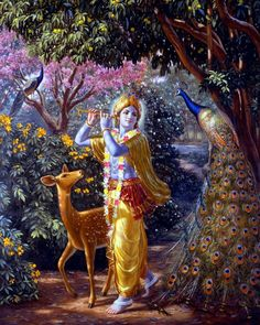 Beautiful painting of Krishna in Vrindavan. In the forground there is a huge peacock and behind Krishna there is a small deer who is completely captivated by Krishna's beauty. Krishna Radha, Hare Krishna, Krishna Lila, Radha Krishna Pictures, Lord Krishna Images, Lord Krishna Wallpapers, Radha Krishna Wallpaper, Krishna Janmashtami, Krishna Painting