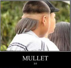 23 Best in Memory of my Mullet images | Mullets, Mullet ...