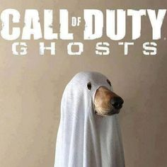 Call of Duty Ghosts Cosplay - The link does not seem to work, but this picture is great.