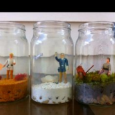 Star Wars Terrarium.