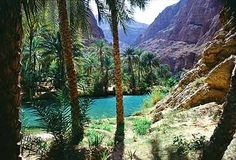 oasis in Oman ...I swam there!!!hiha  it is so beautiful in Oman
