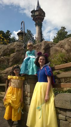 Belle, Frozen Elsa, Snow White hand made dresses.