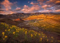 Painted Hills, Oregon :: Scientias in beeld