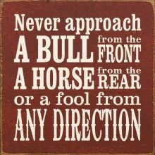 "Quotes:  ""Never approach a #bull from the front, a #horse from the rear, or a #fool from any direction."""
