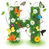 alphabet letters : Beautiful spring letter H Stock Photo