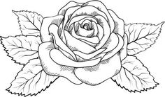 Trendy Flowers Drawing Rose Coloring Pages Simbolos Tattoo, Shape Tattoo, Tattoo Drawings, Art Drawings, Knot Tattoo, Chest Tattoo, Rose Drawings, Drawing Flowers, Drawing Art