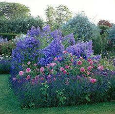 Contemporary Garden Design Lavender roses and campanula lactiflora 'prichard's variety'.Cottage Garden Design Lavender roses and campanula lactiflora 'prichard's variety' Beautiful Roses, Beautiful Gardens, The Secret Garden, Garden Cottage, Prairie Garden, Dream Garden, Big Garden, Family Garden, Garden Bed