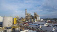 Sinar Mas Cepsa เปิดโรงงานผลิตแอลกอฮอล์ไขมันมูลค่า 300 ล้านยูโรในอินโดนีเซีย - http://www.prbuffet.com/sinar-mas-cepsa-%e0%b9%80%e0%b8%9b%e0%b8%b4%e0%b8%94%e0%b9%82%e0%b8%a3%e0%b8%87%e0%b8%87%e0%b8%b2%e0%b8%99%e0%b8%9c%e0%b8%a5%e0%b8%b4%e0%b8%95%e0%b9%81%e0%b8%ad%e0%b8%a5%e0%b8%81%e0%b8%ad%e0%b8%ae