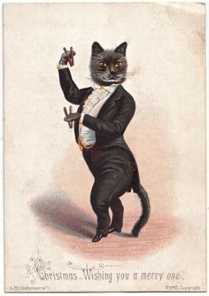 cat_0002 - via spitalfields life