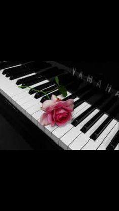 El piano y la Rosa