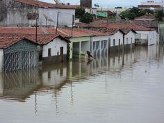 Para o desembargador Augusto Francisco Mota Ferraz de Arruda, a moradora residia irregularmente em área de preservação permanente e ambiental, insuscetível de apropriação por particulares e de usucapião.