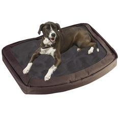 Bergan The Dog's Bed, Canteen, Large - buy your dogs supplies from dog lovers just like you... « DogSiteWorld-Store « DogSiteWorld-Store