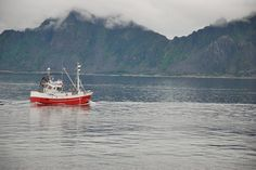 For centuries, the main industry on the islands has been fishing and continues to be so...