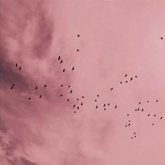 Pink Aesthetic - Source: tumblr | Follow me on instagram for more #photography : https://www.instagram.com/raquelvsa/ #Minimal #Minimalist #Colors #Aesthetic #Pink