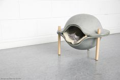 Concrete cat/dog bed on Behance