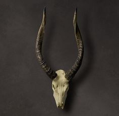 Smooth Antelope Horns in Cast Resin