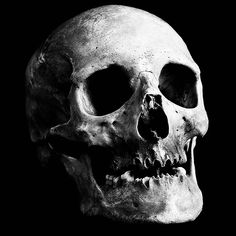 alleged skull collector in Austria is arrested after cops find 56 skulls in his home, all taken from a cemetery.An alleged skull collector in Austria is arrested after cops find 56 skulls in his home, all taken from a cemetery. Near Dark, Skull Reference, Skull Anatomy, Skeleton Drawings, Blackout Tattoo, Totenkopf Tattoos, Dark Pictures, Animal Bones, Danse Macabre