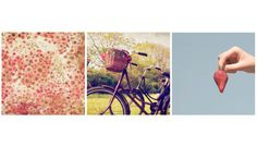 Romantic Amsterdam PhotoSummer Love Collection by sarahnatsumi, $50.00