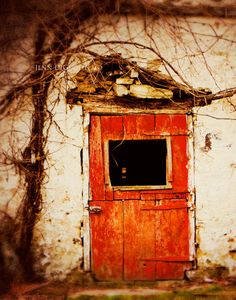 The Red Door by Jenn DiGuglielmo