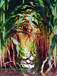 Reflections of Corn by muchobellasartes on Etsy