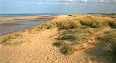 beautiful Holkham, Norfolk, we camped there last year and it was stunning. Norfolk Beach, Norfolk Coast, Wells Next The Sea, Norfolk Holiday, Norfolk England, Fun Days Out, Big Sky, Nature Reserve, Natural World