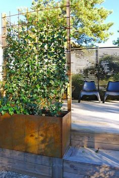 Are you looking for a stylish wooden trellis? Or, you& better install trellis panels and large pots with climbing roses nearby? Then, go explore! Planter Box With Trellis, Garden Trellis, Planter Boxes, Plant Trellis, Back Gardens, Outdoor Gardens, Landscape Design, Garden Design, Plant Wall