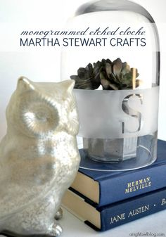 Martha Stewart Crafts Spray Paint System and Frost Glass Paint Set giveaway via anightowlblog.com