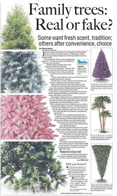 From The Clarion-Ledger in Jackson, MS. Inspired by a similar layout. I asked our photographers to shoot some trees for sale locally. The other art came from companies that sell the products.    Our page designers cropped the trees and combined them to create this layout.