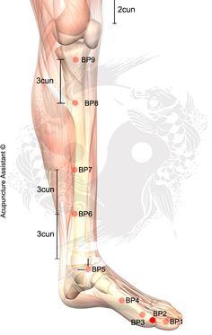 Localização do Ponto: Entre o corpo e a base da falange proximal do Hálux, onde a pele muda de cor. Ações na MTC: Regula o Baço. Resolve umidade. Clareia Calor. Acalma a Mente (Shen). Indicações: Distensão abdominal. Dor epigástrica. Vômito. Diarreia. Constipação. Inchaço repentino dos membros. Sensação de peso. Opressão no tórax. Agitação. Insônia. Área …