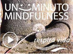 Unos Minutos Mindfulness -Audios y recursos