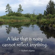 """A lake that is noisy cannot reflect anything."" ~ Robert Adams   #quote"