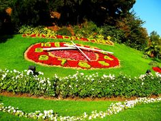 A clock made with flowers!!! Viña del Mar, Chile