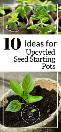 Upcycle common household items to make easy and inexpensive seed starting pots for your spring garden. Great tips for seed starting here. via @whippoorwillgar