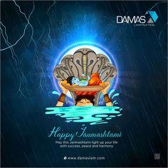 May this Janmashtami light up your life with success, peace and harmony Happy Janmashtami. Happy Janmashtami, Krishna Janmashtami, Light Of Life, Light Up, Happy Diwali Images, Disney Princess Quotes, Festival Celebration, Peace And Harmony, Krishna Images