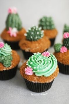 Kaktus Cupcakes, Succulent Cupcakes, Cute Desserts, Vegan Desserts, Delicious Desserts, Kid Cupcakes, Cupcake Cakes, Baby Cakes, Mini Cakes