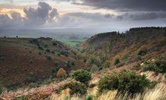 View from Staple Plain, Quantocks, Somerset