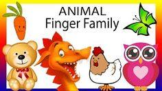 Finger Family | Finger Family Children Nursery Rhymes | Animals Birds Daddy Finger Songs for Kids