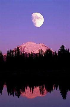 Mt Rainer National Park, Washington. #usa