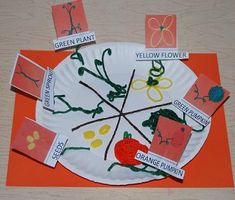 Pumpkin Life Cycle Paper Plate Craft and printable Sequencing Cards
